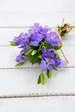 Härlig bukett av blåa blommor royaltyfri bild