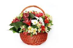 Härlig bukett av ljusa blommor i korg Royaltyfria Bilder