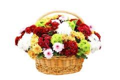 Härlig bukett av ljusa blommor i korgen som isoleras på vit Royaltyfria Foton