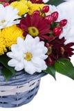 Härlig bukett av ljusa blommor på vit Arkivbild
