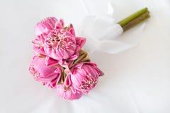 Härlig bukett av lotusblommauppsättningen Arkivfoto