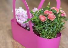 Härlig bukett av rosa rosor och hyacinten i en rosa korg Arkivfoto