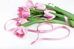 Härlig bukett av rosa tulpan och det rosa bandet som isoleras på w Arkivfoto