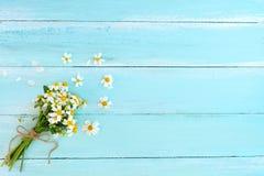 Härlig bukett av vita vildblommor på blå träbakgrund royaltyfria foton