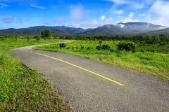 Härlig bygdväg i grönt fält under blå himmel Arkivfoto