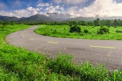 Härlig bygdväg i grönt fält under blå himmel Fotografering för Bildbyråer