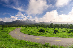 Härlig bygdväg i grönt fält under blå himmel Arkivbild
