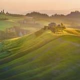 Härlig cypress-fodrad väg i ljuset av solnedgången i Tuscany Royaltyfri Fotografi
