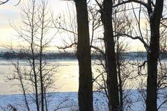 härlig dagvinter Snö på banken av floden Royaltyfria Bilder