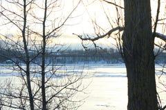 härlig dagvinter Snö på banken av floden Royaltyfri Bild