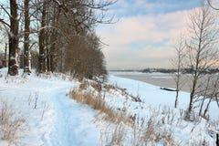 härlig dagvinter Snö på banken av floden Arkivbild