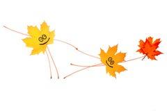 härlig dans med blommor Royaltyfria Bilder