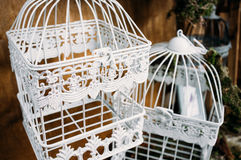 Härlig dekorativ fågelburnärbild arkivfoto