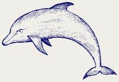 Härlig delfinbanhoppning i vattnet Arkivbilder