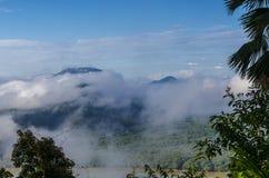 Härlig dimma över skogen i söder av Thailand Royaltyfri Bild
