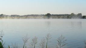 Härlig dimma svävar i morgon över - bevattna yttersida av en sjö arkivfilmer