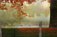 Härlig dimmig sjö i Autumn In Hampstead Arkivfoton