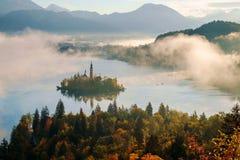Härlig dimmig soluppgång den blödde sjön på höst Royaltyfria Foton