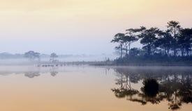 Härlig dimmig soluppgång på en sjö i regnskog Arkivbilder