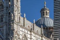 härlig domkyrka etsad Europa golv lagd in italy marmorpanel siena Royaltyfria Bilder