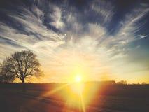 Härlig dramatisk solnedgång över ett fält royaltyfri bild