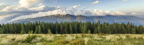 Härlig dramatisk vit fördunklar över berg Forest Hills in royaltyfria bilder