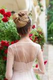 Härlig elegant flicka i aftonklänning med den festliga frisyren för härlig afton Royaltyfri Bild