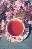 Härlig engelskt, blomstrar stänger sig tappningtekoppen med det japanska körsbärsröda trädet, upp royaltyfria bilder