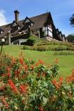 härlig Europa trädgårds- husstil Arkivfoton