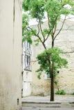 Härlig europeisk borggård Royaltyfria Foton