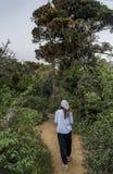 Härlig europeisk kvinna som går på vägen till den tropiska skogen royaltyfri bild