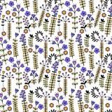 Härlig färgrik blom- prydnad seamless vektor för modell Royaltyfria Foton