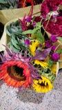 Härlig färgrik grupp av blommor Och en solros royaltyfri bild