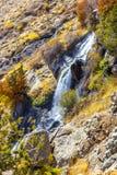 Härlig färgrik natur Arkivfoton