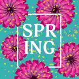 Härlig festlig turkosbakgrund med blommor och konfettier Arkivbild