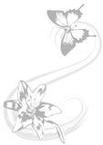 Härlig fjäril och delikat lilja som bakgrund royaltyfri bild
