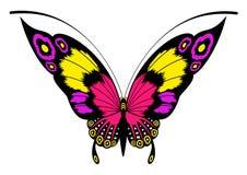 härlig fjärilsdesign Arkivfoton