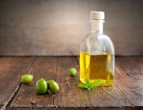 härlig flaska klädde oljeolivgrönkryddor Royaltyfria Bilder