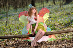 Härlig flicka i bilden av en fjäril arkivbild