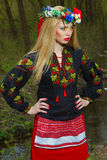 Härlig flicka i ukrainskt nationellt posera för klänning Arkivfoto