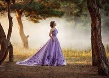 Härlig flicka i ursnyggt purpurfärgat långt strosa för klänning som är utomhus- royaltyfri bild