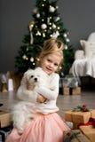 Härlig flicka med hundsammanträde nära julgranen glada lyckliga ferier för jul Royaltyfria Foton
