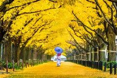 Härlig flicka som bär den japanska traditionella kimonot på raden av det gula ginkgoträdet i höst Hösten parkerar i Tokyo, Japan arkivbild