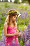 Härlig flicka som ler i en rosa klänning i lupinfält Arkivbild