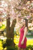 Härlig flicka som poserar till fotografen mot bakgrunden av blommande rosa träd Vår Sakura Arkivfoton