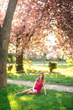 Härlig flicka som poserar till fotografen mot bakgrunden av blommande rosa träd Vår Sakura Fotografering för Bildbyråer