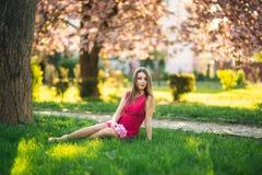 Härlig flicka som poserar till fotografen mot bakgrunden av blommande rosa träd Vår Sakura Arkivfoto