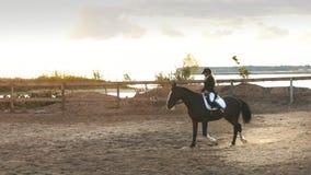 Härlig flicka som rider en häst i bygd arkivfilmer