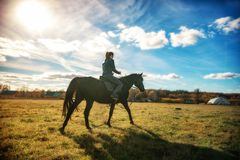 Härlig flicka som rider en svart häst på en solig dag silhouettes rid- hästhästar för dressage som hoppar poloryttare, sportvekto arkivbild