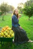 Härlig flicka som samlar ny frukt Fotografering för Bildbyråer